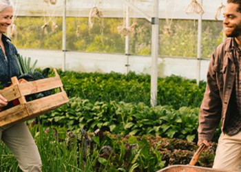 man and woman collecting vegetables in a field smiling about their successful R&D claim
