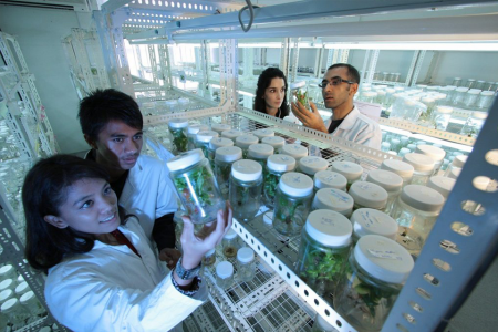 Scientists in a laboratory looking at a jar discussing their Medical R&D Tax Credit claim